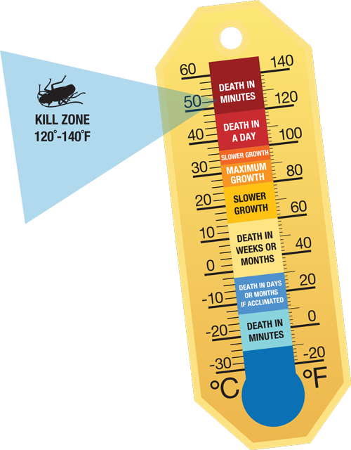 Bed Bug Heat Thermometer